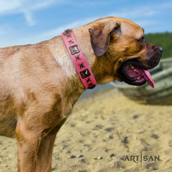 Cane Corso flexible studded full grain leather collar