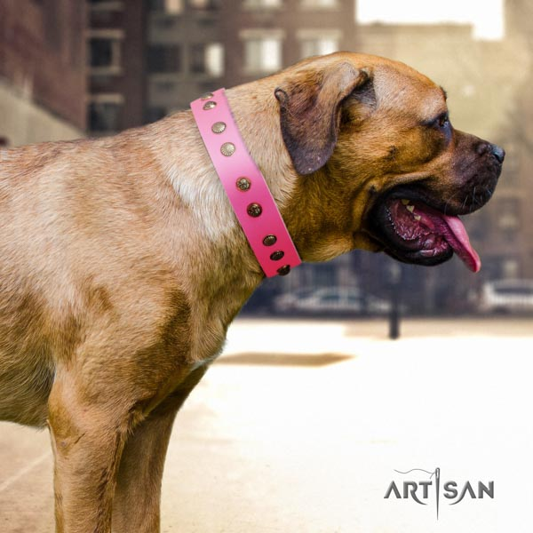 Cane Corso decorated collar made of top rate leather