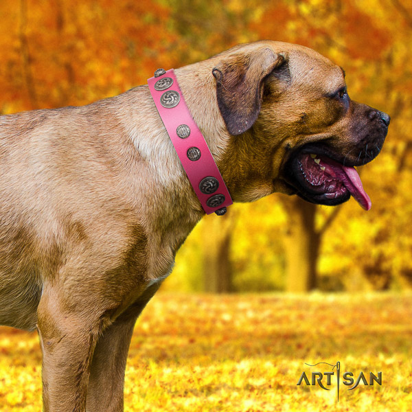 Cane Corso exquisite genuine leather dog collar for fancy walking