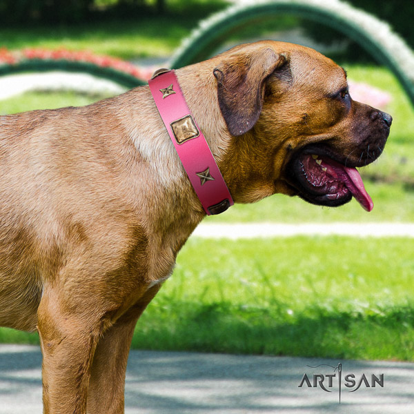 Cane Corso comfortable leather dog collar for walking