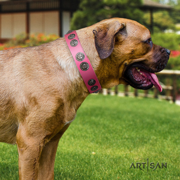 Cane Corso impressive genuine leather dog collar for comfortable wearing