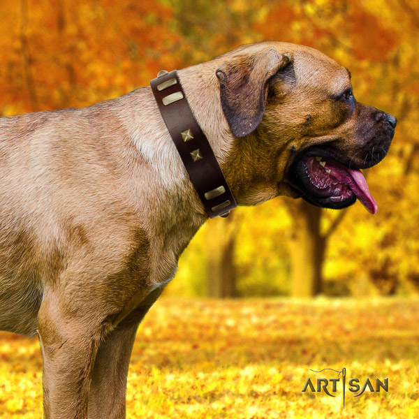 Cane Corso easy to adjust full grain genuine leather dog collar for comfy wearing