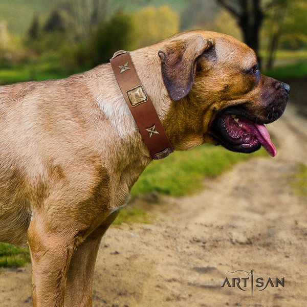 Cane Corso stunning leather dog collar for handy use