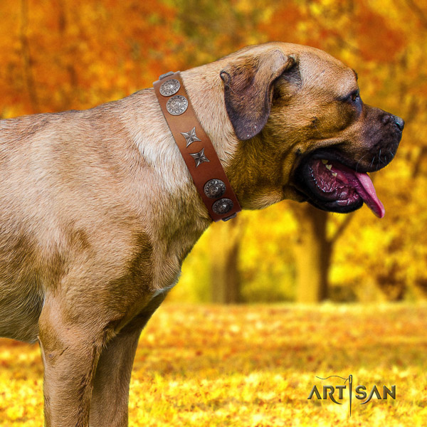 Cane Corso adjustable full grain natural leather dog collar for everyday use