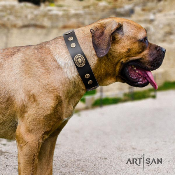 Cane Corso soft adorned natural genuine leather collar
