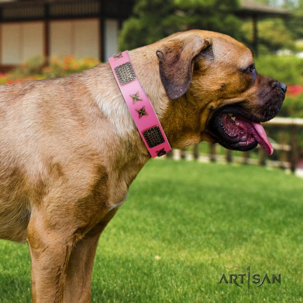 Cane Corso decorated collar made of gentle to touch full grain leather
