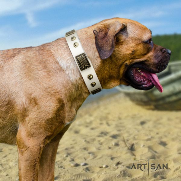 Cane Corso decorated collar made of quality full grain leather