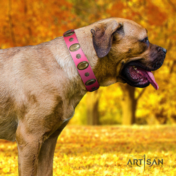 Cane Corso easy adjustable full grain leather dog collar for comfortable wearing