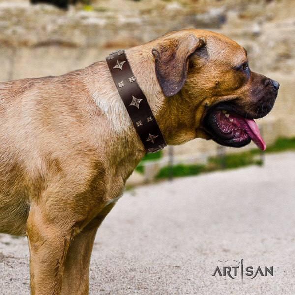 Cane Corso unique full grain genuine leather dog collar for everyday walking
