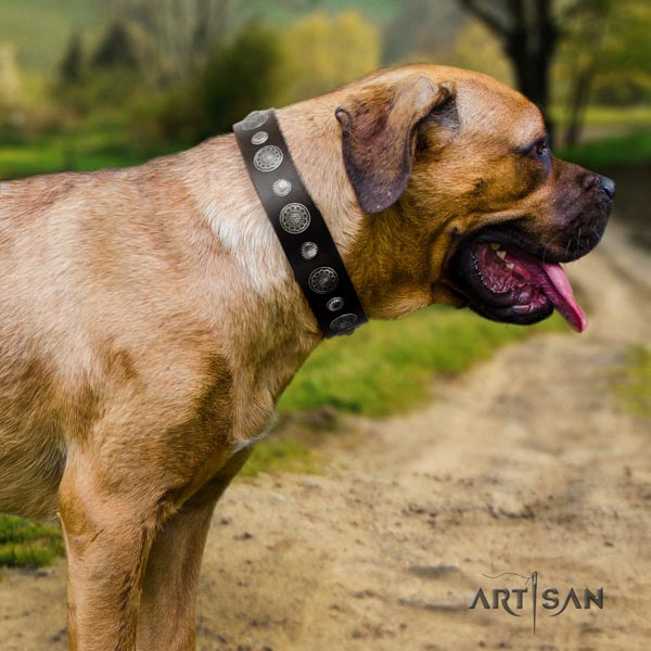 Cane Corso adorned collar made of quality leather