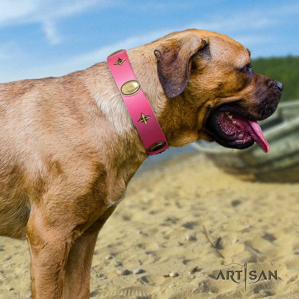 Cane Corso trendy natural genuine leather dog collar for handy use