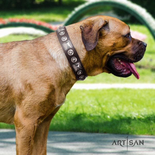 Cane Corso soft to touch embellished full grain natural leather collar