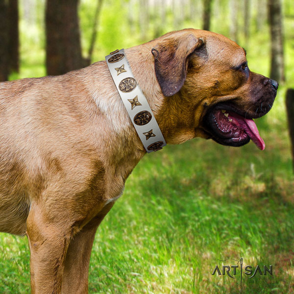Cane Corso best quality leather dog collar for easy wearing