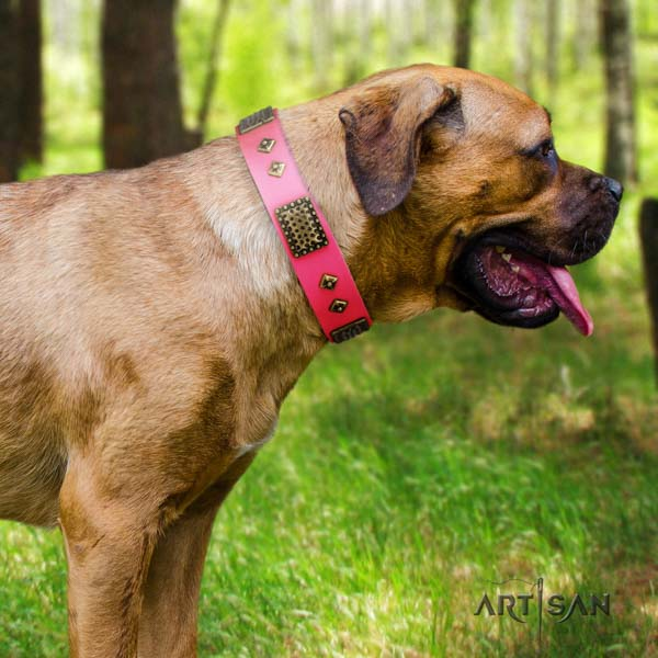 Cane Corso adorned collar made of soft full grain genuine leather