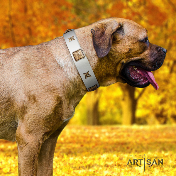 Cane Corso awesome natural genuine leather dog collar for walking