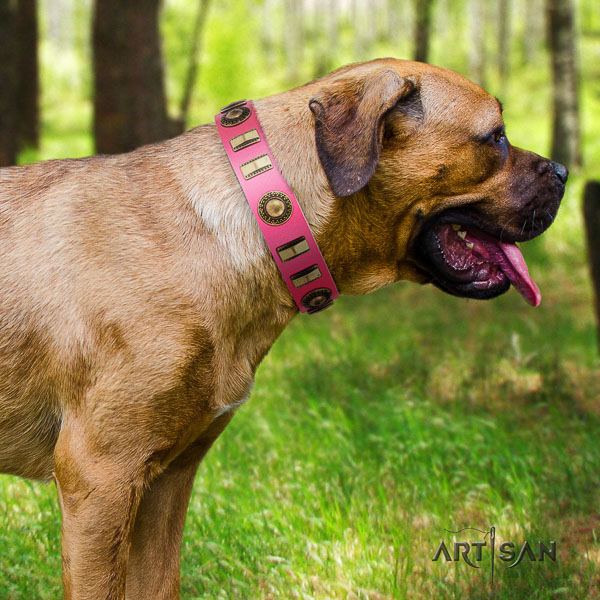 Cane Corso convenient natural genuine leather dog collar for handy use