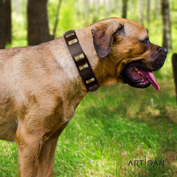 Cane Corso handmade genuine leather dog collar for daily use