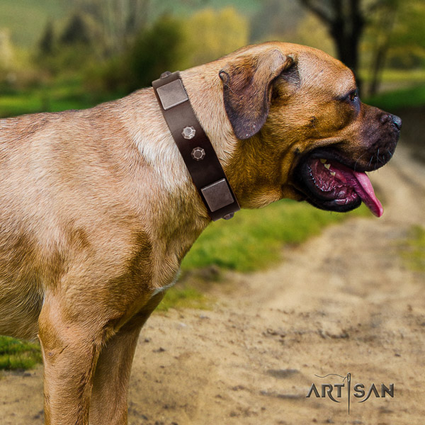 Cane Corso inimitable full grain leather dog collar for walking