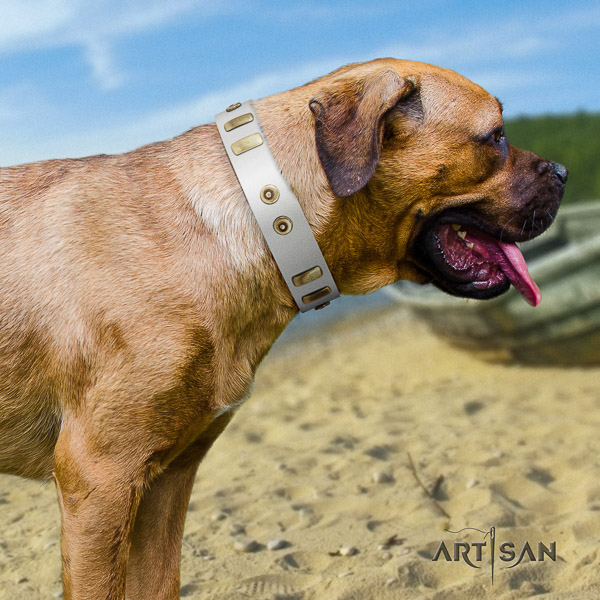 Cane Corso easy to adjust natural genuine leather dog collar for walking