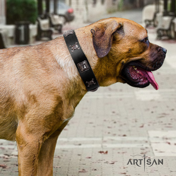 Cane Corso convenient full grain leather dog collar for walking