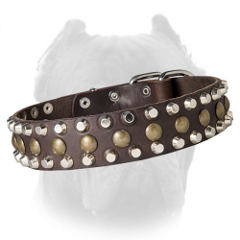 Gorgeous Cane Corso collar with pyramids and spheres