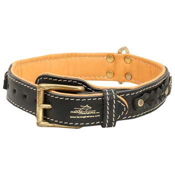 Cane Corso leather dog collar with massive brass  buckle