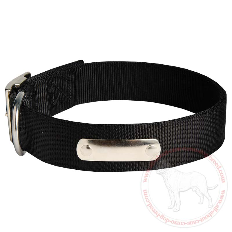 Get All Weather 2 Ply Nylon Cane Corso Collar | Dog ...