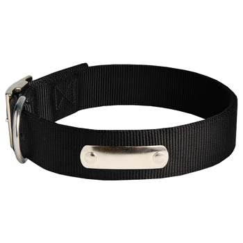Cane Corso nylon dog collar with name tag