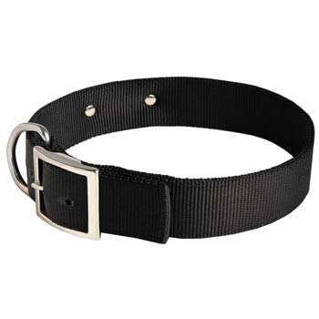 Cane Corso nylon dog collar with rust-proof buckle