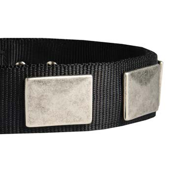 Cane Corso nylon dog collar with vintage nickel plates