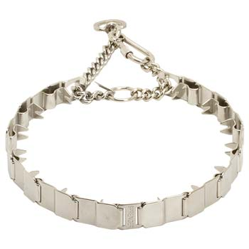 Stainless Steel Prong Collar for Cane Corso Obedience Training