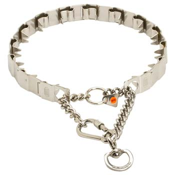Cane Corso Stainless Steel Prong Collar of German Quality