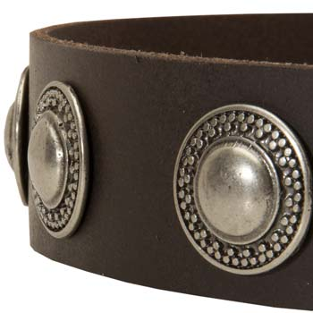 Sophisticated conchos handset in leather strap