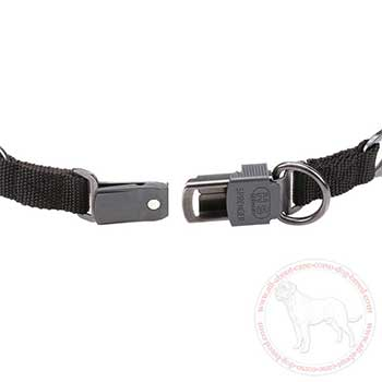 Dog collar for Cane Corso with click lock buckle