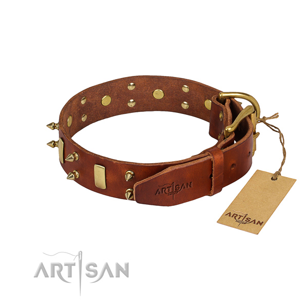 Resistant leather dog collar with rust-proof elements