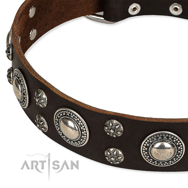 Adjustable leather dog collar with extra sturdy non-rusting hardware