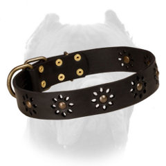 Leather dog collar for Cane Corso with flowers