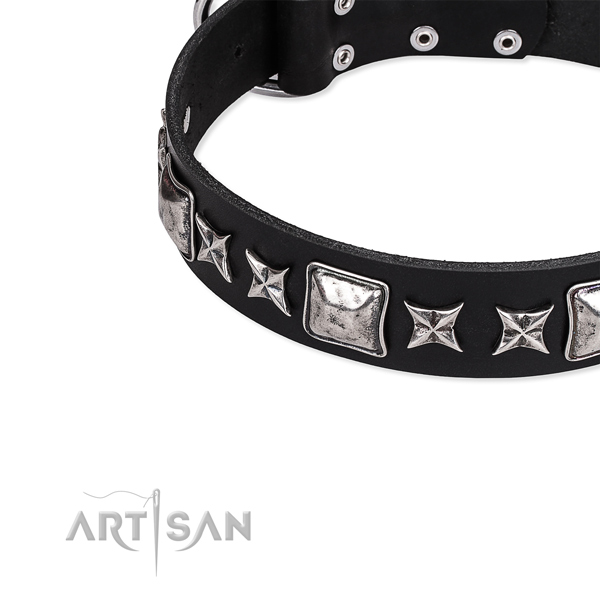 Full grain natural leather dog collar with extraordinary decorations