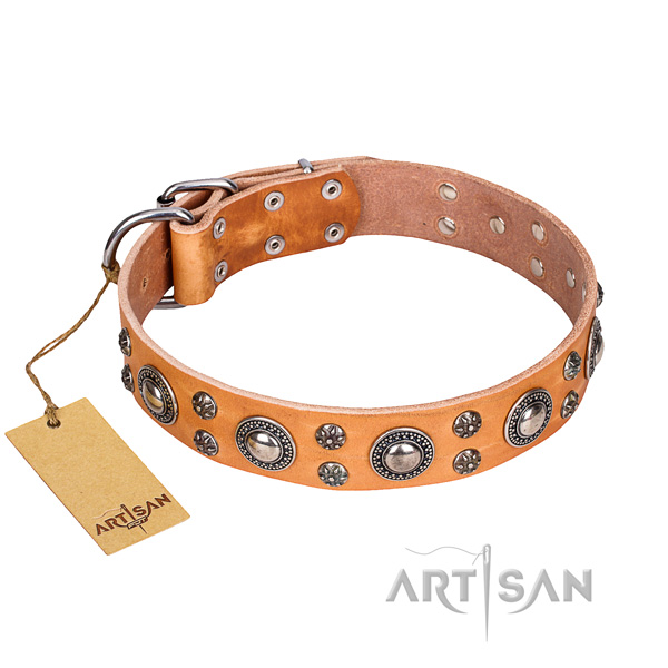 Fashionable full grain natural leather dog collar for stylish walking