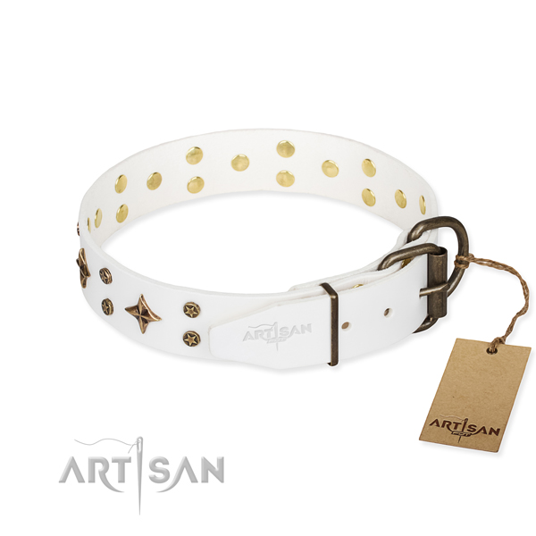Daily use full grain leather collar with embellishments for your doggie