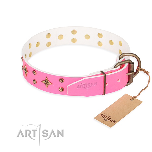 Daily use leather collar with studs for your doggie