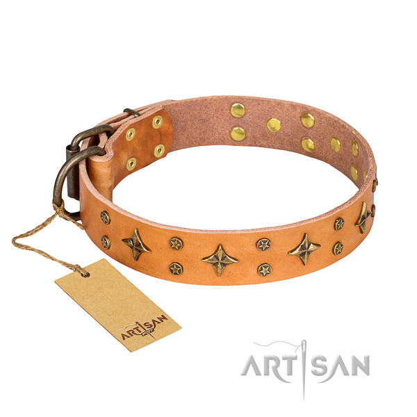 Remarkable full grain leather dog collar for everyday walking