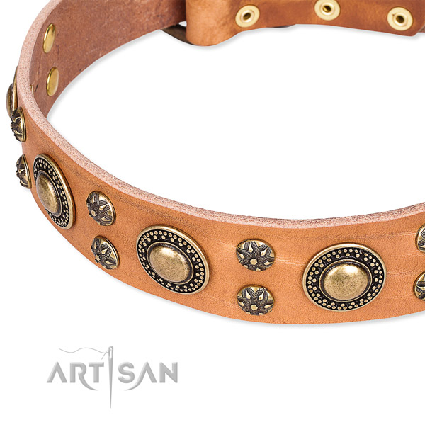 Leather dog collar with unusual decorations