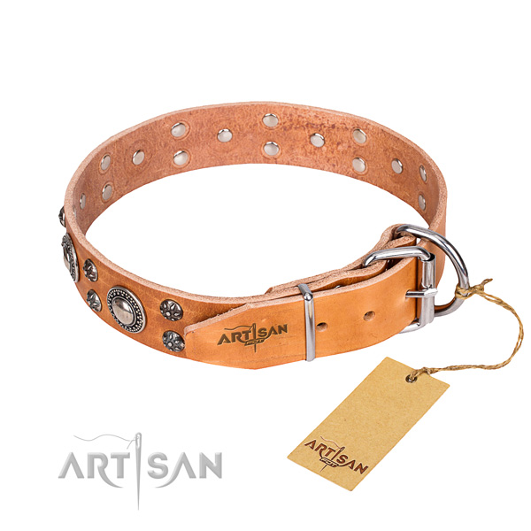 Daily use full grain leather collar with adornments for your doggie