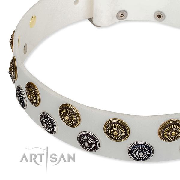 Genuine leather dog collar with remarkable embellishments