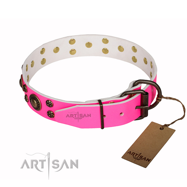Exquisite full grain leather dog collar for everyday walking