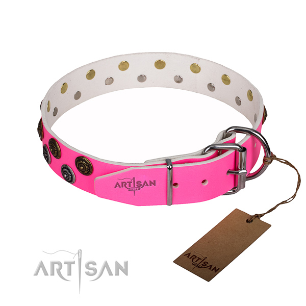 Walking leather collar with studs for your pet