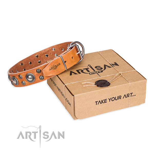 Finest quality full grain natural leather dog collar for everyday walking