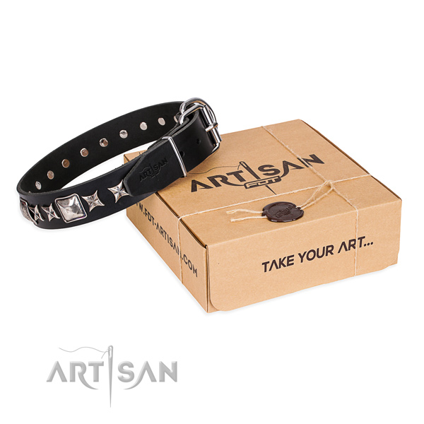 Decorated full grain leather dog collar for everyday walking