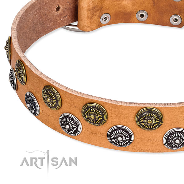 Genuine leather dog collar with top notch decorations